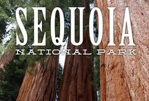 National Parks / by Lizzy Mireles