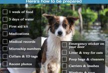 Emergency Prep. items