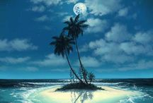 wish i was there!/palm trees/sc / by Dolly Satterfield