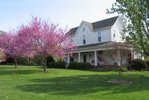 1898 Red Bud Bed & Breakfast / 1898 Red Bud Bed & Breakfast