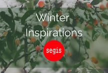 Winter Inspirations | Segis / Lacking ideas? Find just the right winter inspiration, use your imagination. With the nights growing darker and the weather growing colder, it's time to look at the beauty that winter brings Enjoy our collection and make your space more colourful.