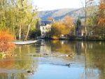 Le Moulin du Vey - Gîtes pleine nature - Normandie / Court ou long séjour - profitez des charmes de la Nature de la Suisse Normande