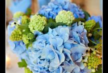 Wedding Flowers / by Melissa Hudson