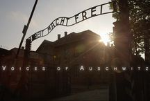 Voices of the Holocaust / Resources for learning and teaching about the Holocaust and lessons we still have yet to learn.
