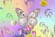 Butterflies / by Carolyn Rice