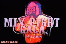 Mix Fight Gala 16 in Fulda / Mix Fight Gala 16 in Fulda