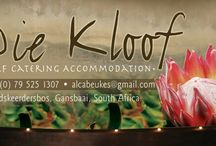 Die Kloof Baardskeerdersbos - Farm Self Catering / Self Catering Accommodation on a farm, on the outskirts of Baardskeerdersbos