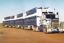 ROAD TRAIN TRUCKS & BIG RIGS