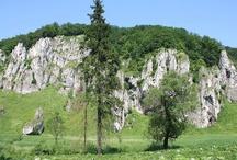 Okolica // Surroundings / Nasz hotel połozony jest w w bezpośrednim sąsiedztwie Ojcowskiego Parku Narodowego. // Our hotel is located  close to the Ojcow National Park.