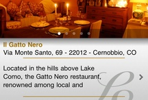 Switzerland & LakeCOMO iPhone App / Switzerland & Lake Como is the one and only guide on the go for those who love the best and cannot do without it.  It is the first elite guide to Switzerland & Lake Como available in a digital version for iPhone & iPad. http://appstore.com/switzerlandandlakecomo