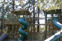 Favorite Parks and Activities in Silicon Valley / Favorite Parks and Activities in Silicon Valley