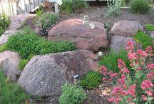 Rock On! / Adventures in Rock Gardening...