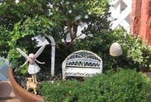 Fairy garden / by Rhonda Tornow