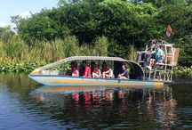 Gator Watching in the Everglades / Airboating is loads of fun through the Florida Everglades. Come out and play at Everglades Holiday Park