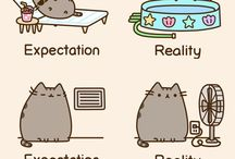 Pusheen kitty's