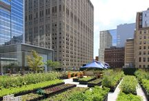 Greening the city / Greening the city: edible roofs, vertical gardens, urban agriculture and city farming among others