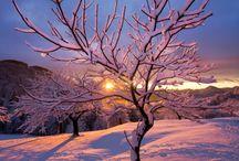 paysages sous la neige