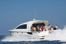 Excursions / Exhilarating island excursions, day trips, beach club escapes, sunset cruises and exclusive private escapes.