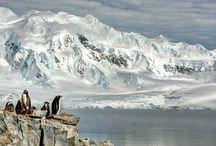 """Antartide / Antartide, continente dei paesaggi mozzafiato, degli enormi iceberg dalle mille sfumature, della natura incontaminata, un'affascinate avventura visiva caratterizzata da distese immense e luce abbagliante. Oggi i viaggiatori, come moderni """"esploratori"""", possono andare alla scoperta di questo magnifico ambiente durante l'estate australe (novembre/marzo) http://bit.ly/16KjFtl"""