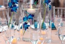Orquídeas para Eventos