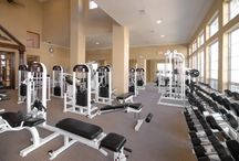 Apartment Fitness Centers / The Best Apartments to rent with State of the Art Fitness Centers!
