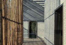 bamboo / by Jennifer Craig (jenimarie)