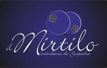 Il Mirtilo / Nuestros arandanos y productos!