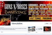 Tuborg Goldfest / Tuborg Goldfest 4-6-7 Temmuz tarihlerinde Türkiye'den ve dünyadan 24 grubun katılımıyla İstanbul Parkorman'da gerçekleşti. Festivalde Guns'n Roses, Evanescence, Apocalyptica, Within Temptation, Lacuna Coil, Ugly Kid Joe gibi dünyaca ünlü grupların yanı sıra Türkiye'den Şebnem Ferah, Pentagram, Aylin Aslım, Malt gibi isimler de yer aldı.