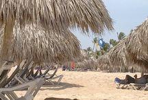 Punta Cana - FREE TRIP!