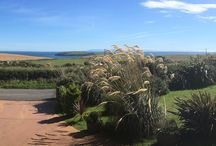 For Sale - Coastal Bungalow with spectacular see views set in 2 acres of land and domestic wind turbine!
