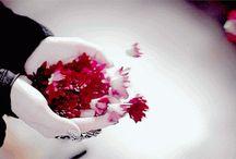 GIF virágok