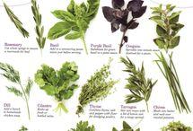 Herbs Gardening & more