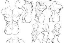 ⚫ anatomy ⚫