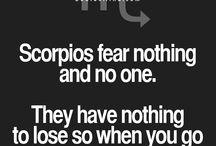 zodiacs...and Scorpio.
