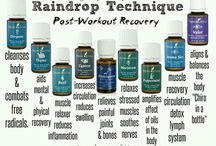 Young Living Raindrop Technique / All about YL RDT that consists of the following :  Oregano, Thyme, Basil, Cypress, Wintergreen, Majoram, Peppermint, Aroma Siez & Valor