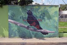 World of Urban Art : SROK  [Colombia]