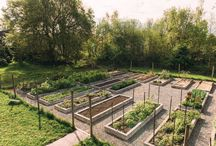 Gardens We Love / We have a huge Modern Farmer crush on these gardens.