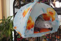 DIY for parrots