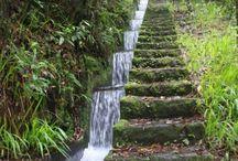 Utak, lépcsók