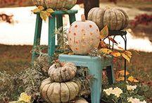Fall Time / by Stephanie Sampler