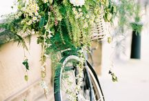 Wedding Bicycles / Bicycles and colour combos