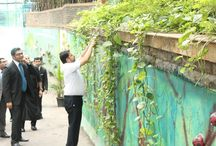 World Earth Day - The Orchid Hotel, Mumbai / Our Green Team & staff believes that Earth Day is not a one day activity but is to be celebrated everyday, so keeping this in mind every department took up a section of 1000 ft wall and designed it with waste materials they have in their department & provided beautiful messages about saving Environment. / by The Orchid Hotel, Mumbai