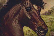 horseevintage