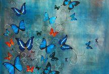 <3 Motylki <3 / Butterflies