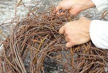 Nest aus Birkenreisig