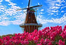 Tulip Time in Holland, Michigan / We visit one of North America's Top Hundred Events - Tulip Time in Holland, Michigan! / by McCoy Tours