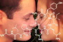 love Touch hug habit happines oxytocin - the love we need-Brain