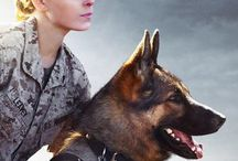 Megan Leavey 2017 Full Movie Streaming Online in HD-720p Video Quality / Watch Movies Online Free, Watch Free Full Movies Online, Watch Free Online Movies, Film Streaming, Download Movies, New movies 2017
