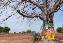 Gambia.....future