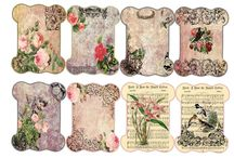 labels / by Carol-anne Houghting